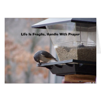 Life Is Fragile, Handle With P... Card