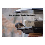 Life Is Fragile, Handle With P... Greeting Card