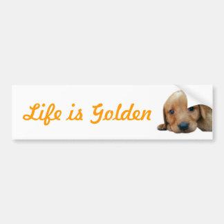 Life is Golden Bumper Sticker