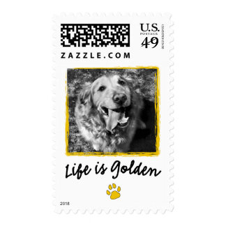 Life Is Golden (Retriever) Stamps