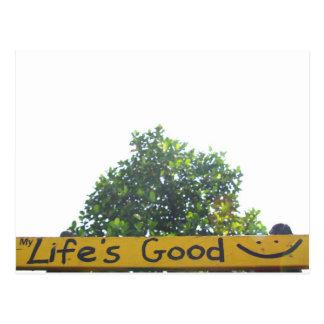 Life is good Postcard