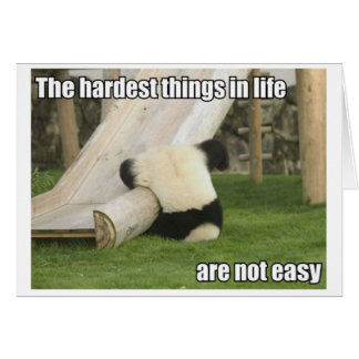 Life is Hard Panda greeting card