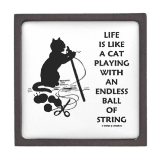 Life Is Like A Cat Playing Endless Ball String Premium Gift Boxes