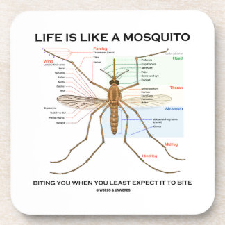 Life Is Like A Mosquito Biting You When You Least Beverage Coaster