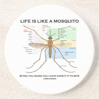 Life Is Like A Mosquito Biting You When You Least Sandstone Coaster