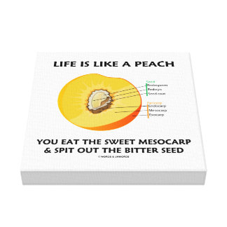 Life Is Like A Peach Eat Sweet Mesocarp Food Humor Canvas Print