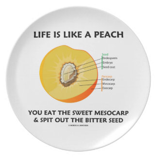 Life Is Like A Peach Eat Sweet Mesocarp Food Humor Plate