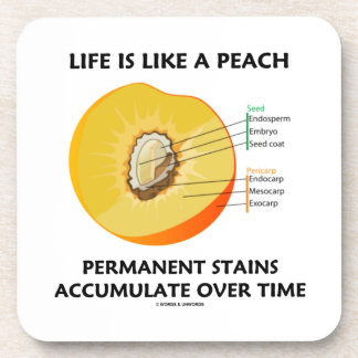 Life Is Like A Peach Permanent Stains Accumulate Coaster