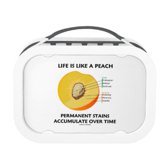 Life Is Like A Peach Permanent Stains Accumulate Lunch Box