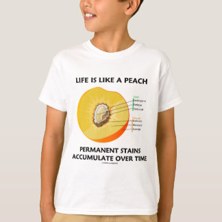 Life Is Like A Peach Permanent Stains Accumulate T-Shirt