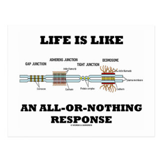 Life Is Like An All-Or-Nothing Response Postcard