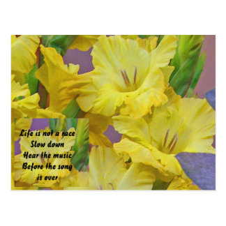Life is Not a Race Gladiolus Postcard