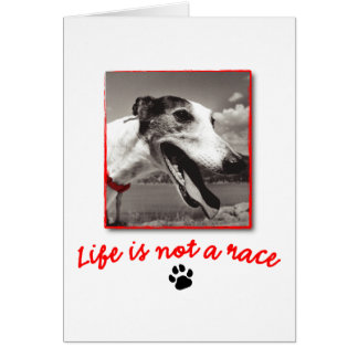Life is NOT a Race Greeting Card