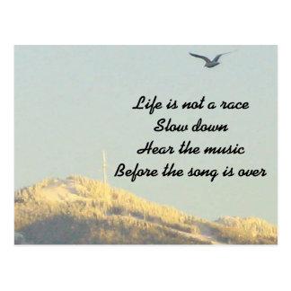 Life is Not a Race Postcard