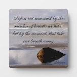 Life Is Not Measured Plaques