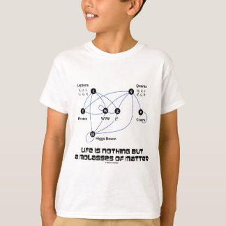 Life Is Nothing But A Molasses Of Matter (Physics) T-Shirt