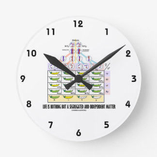 Life Is Nothing But A Segregated Independent Round Wallclock