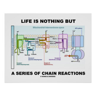 Life Is Nothing But A Series Of Chain Reactions Poster