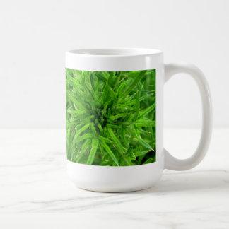 life is prickly classic white coffee mug
