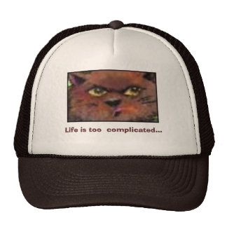 Life is too  complicated... mesh hats