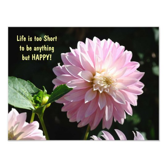 Life is too Short to be anything but HAPPY prints