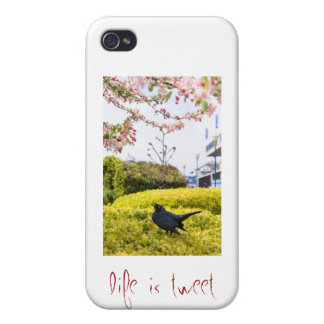Life Is Tweet iPhone 4/4S Covers