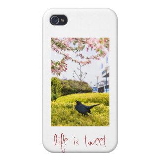 Life Is Tweet iPhone 4 Case
