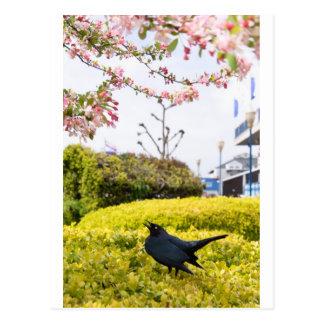 Life Is Tweet Postcard