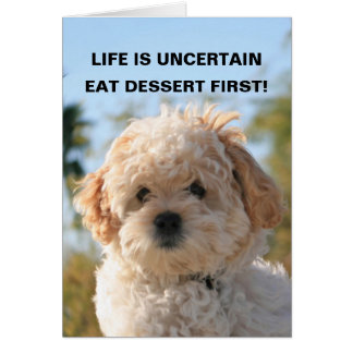 LIFE IS UNCERTAIN, EAT DESSERT F... CARD