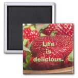 Life is Yummy 2 Inch Square Magnet