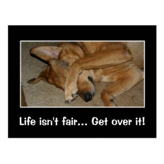 Life isn t fair to anyone you big crybaby postcards