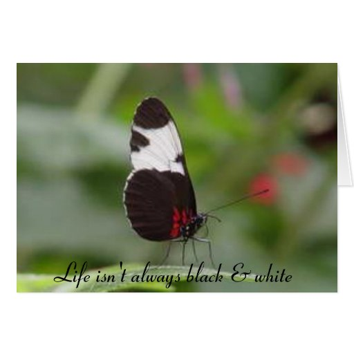 Life isn't always black & white cards