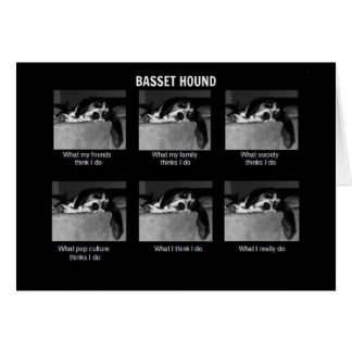Life of a Basset Card