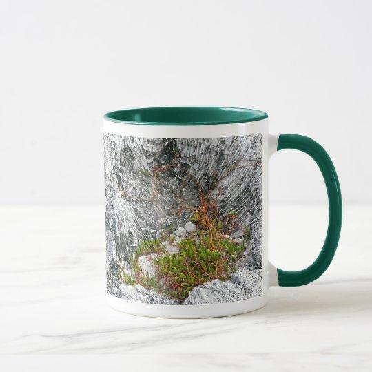Life On A Fossilized Reef Mug