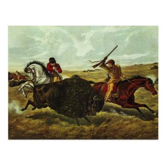 Life on the Prairie - the Buffalo Hunt, 1862 Postcard