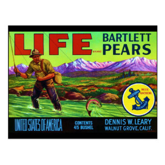 Life Pears Post Cards