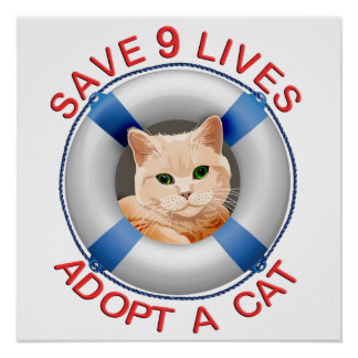 Life Preserver with Cat Adoption Poster