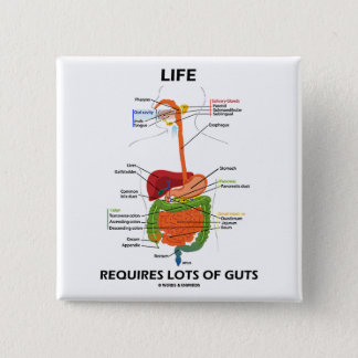 Life Requires Lots Of Guts (Digestive System) Button