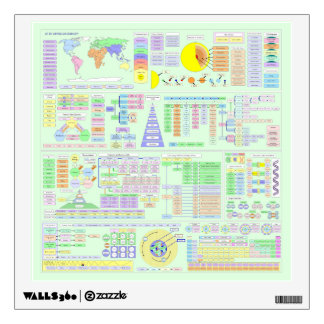LIFE THE UNIVERSE AND COMPLEXITY CHART WALL DECAL