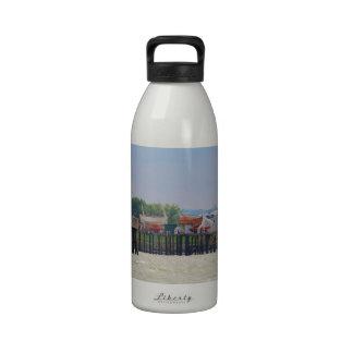 Lifeboats Reusable Water Bottles