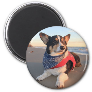 Lifeguard on Duty Magnet