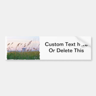 Lifeguard shack on Florida beach picture Bumper Stickers