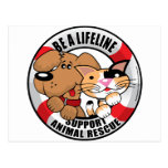 Lifeline : Support Amimal Rescue Post Cards