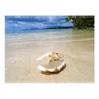 Life's a Beach Seashell Ocean Tahiti 232 Postcard