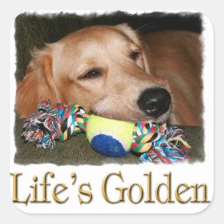 Life's Golden Square Sticker