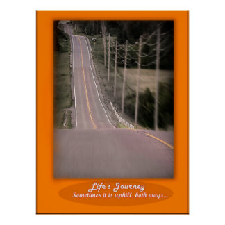 Life's Journey Poster
