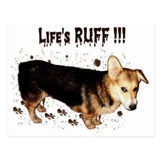 Life's Ruff - Gimli Postcard