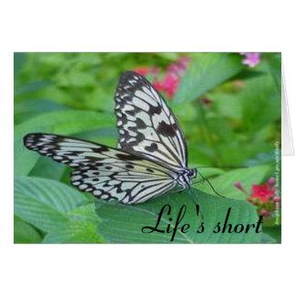 Life's short card