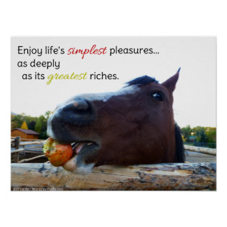 Life's Simplest Pleasures... Poster