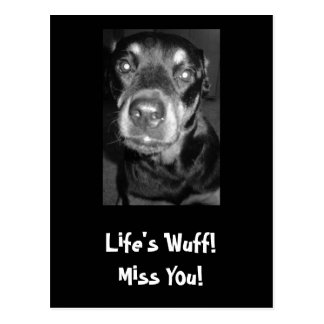 Life's Wuff! Miss You! Postcard